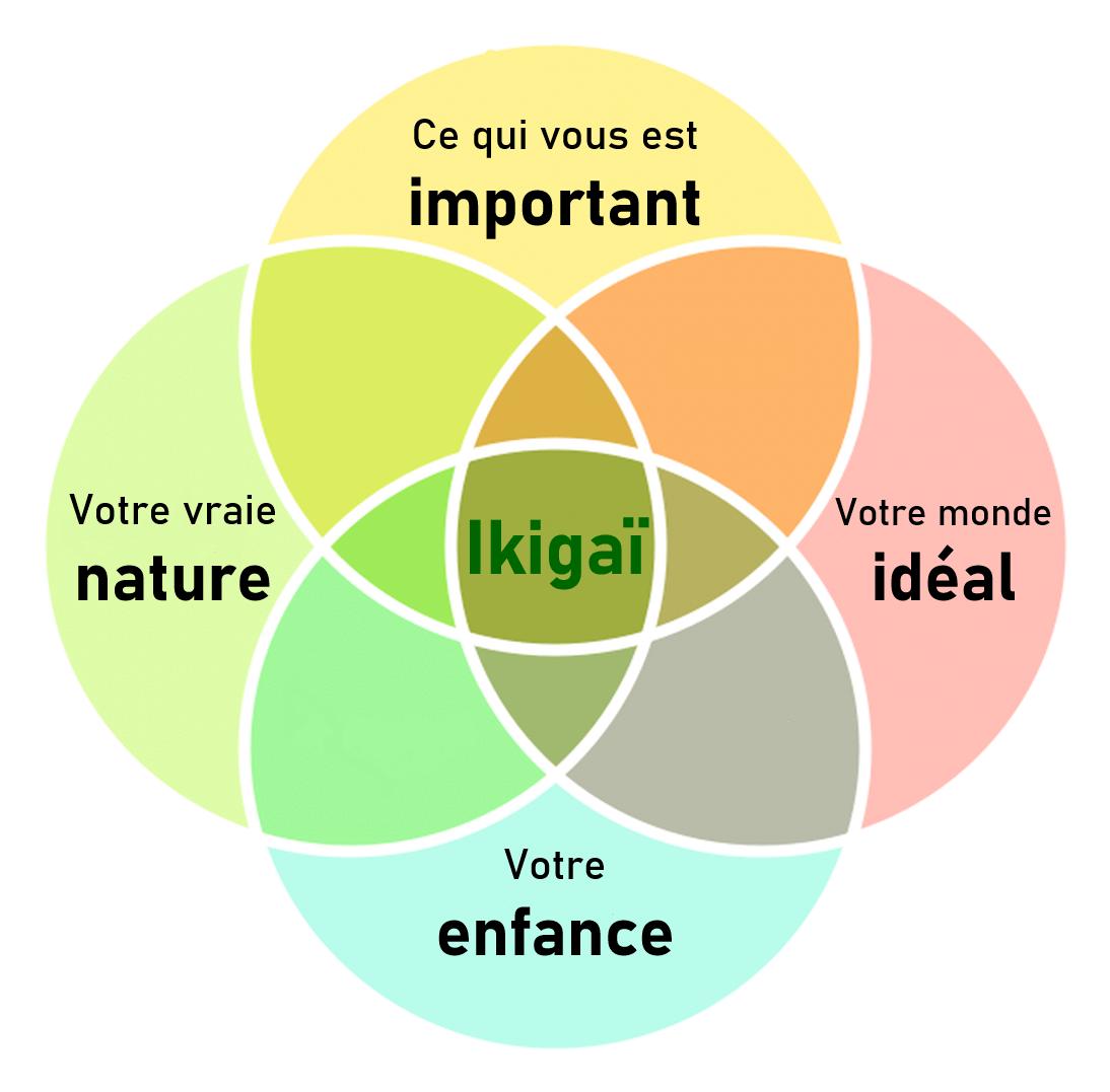 4 élements pour ikigaï